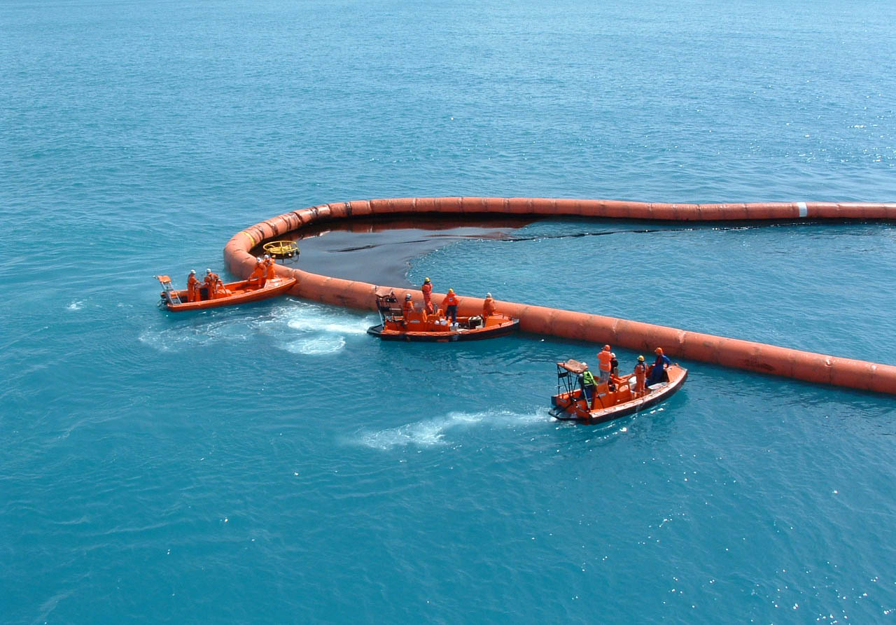 Norlense offshore crop